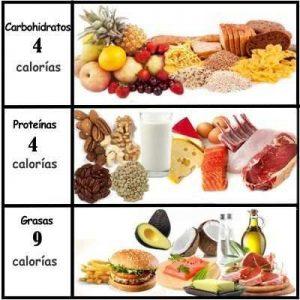 CSS fuente saludable alimentación deportistas amateurs